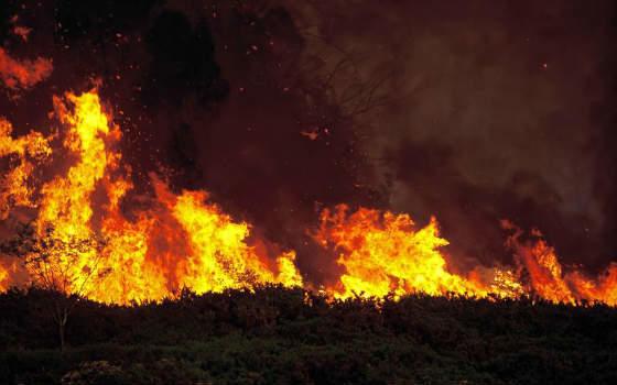 Curso de Extinción de Incendios Forestales