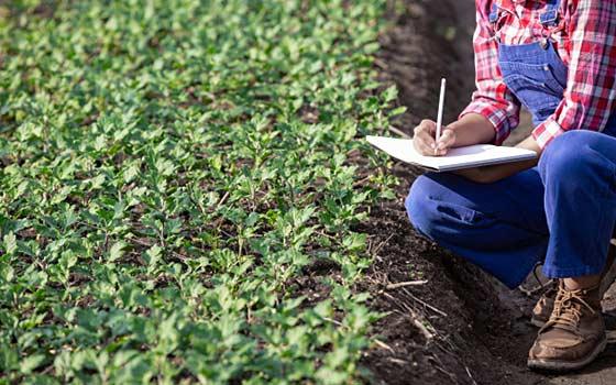Curso online Profesional de Agricultura
